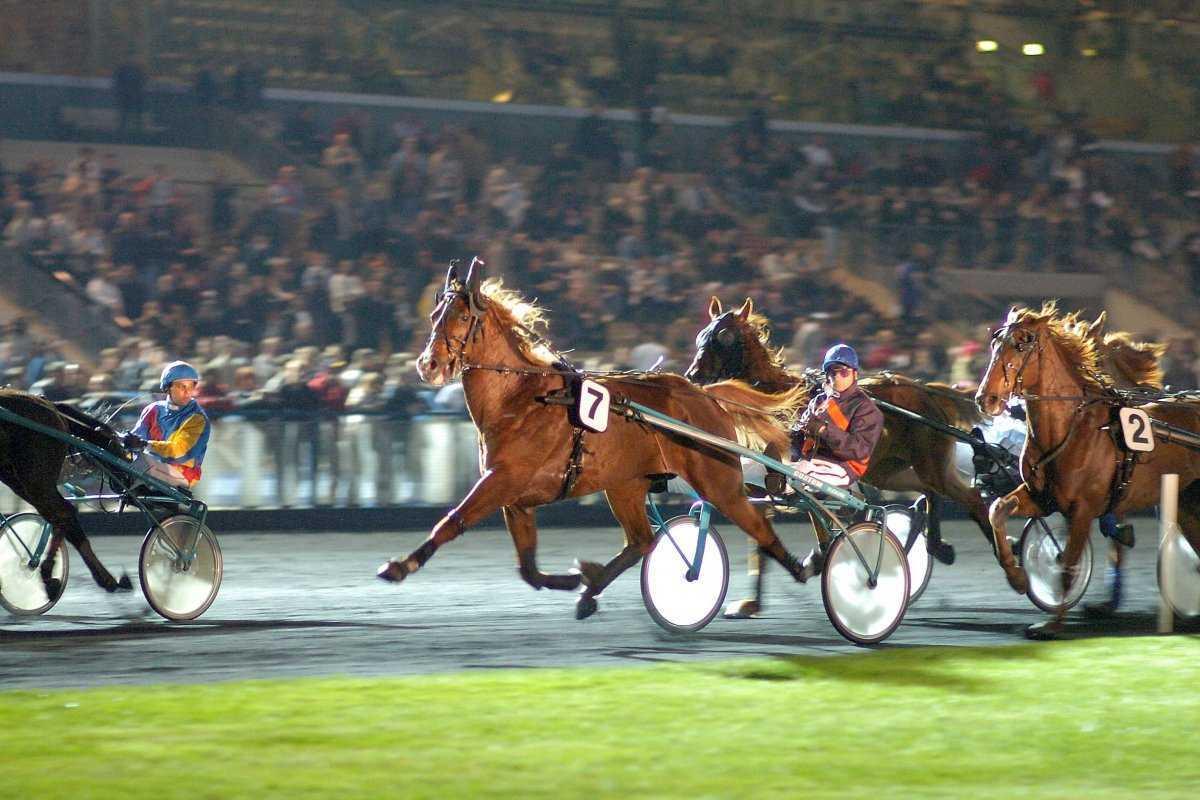 Course de chevaux nocturne